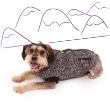 72435 - Dog Coat Thredbo Jacket