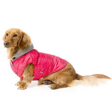 Dog Jacket Juicy Design